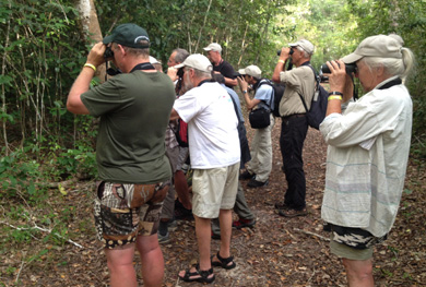 18-Days-Birding safari-Expedition Kenya