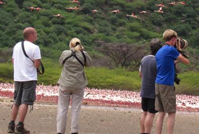 Birding_photography-Safari