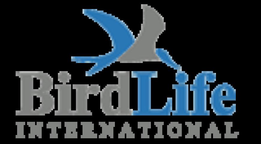 birdlife-international
