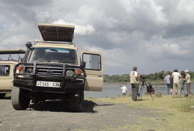 kenya-tanzania-birding-safari