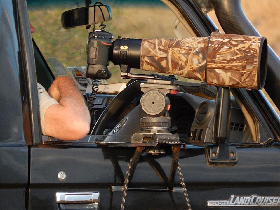 Wildlife Photography Safaris