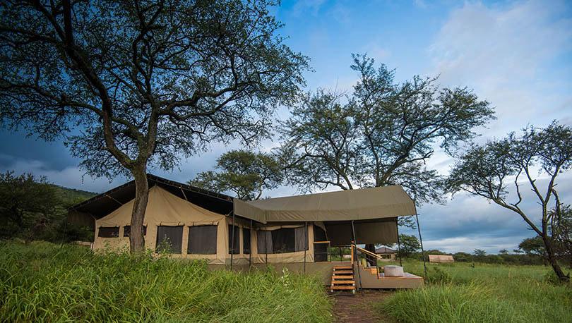 Serengeti Dunia Luxury Camp