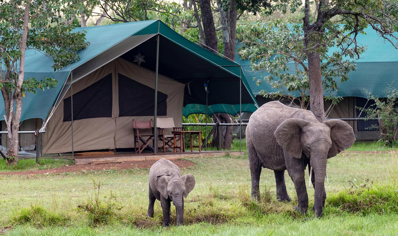 7 days Luxury Little governor's Camp outside Balcony wildlife viewing