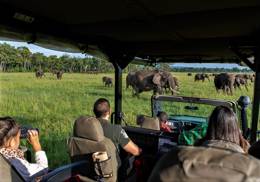 Governor's camp Masai Mara Game drive